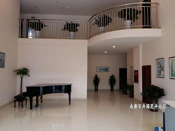 某办公大楼植物租赁设计方案及案例效果图