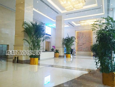 酒店花卉植物摆放设计方案及租摆案例