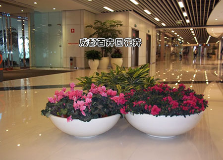 某商场盆栽花卉租摆案例及设计方案