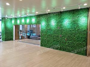 成都仿真植物墙设计