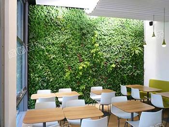 餐厅植物墙设计