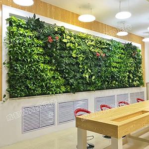 成都植物墙报价