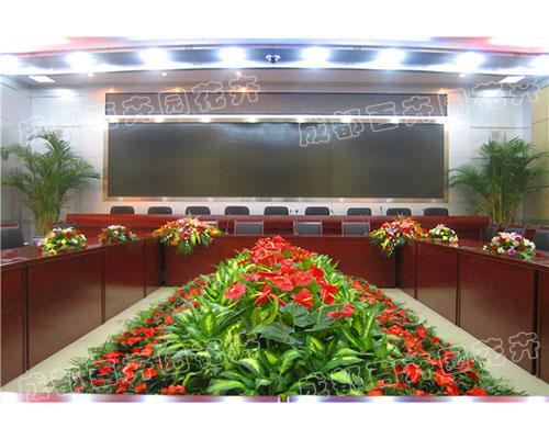 成都办公室租绿植(会议花卉绿植组合造景)