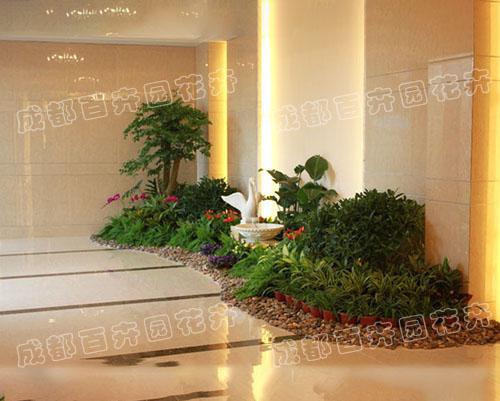 写字楼花卉绿植组合造景案例