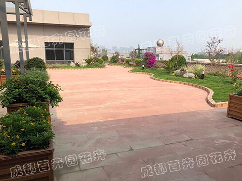 成都某企业屋顶花园设计栽种案例